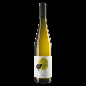 Sauvignon Blanc trocken - Hofmann - Rheinhessen